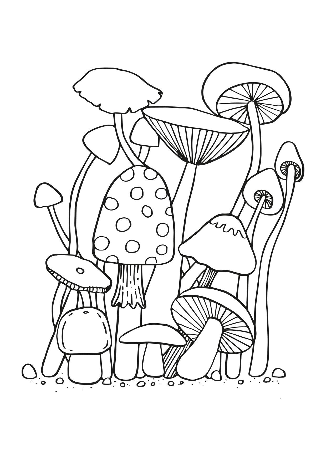 Disegno di funghi da colorare 14
