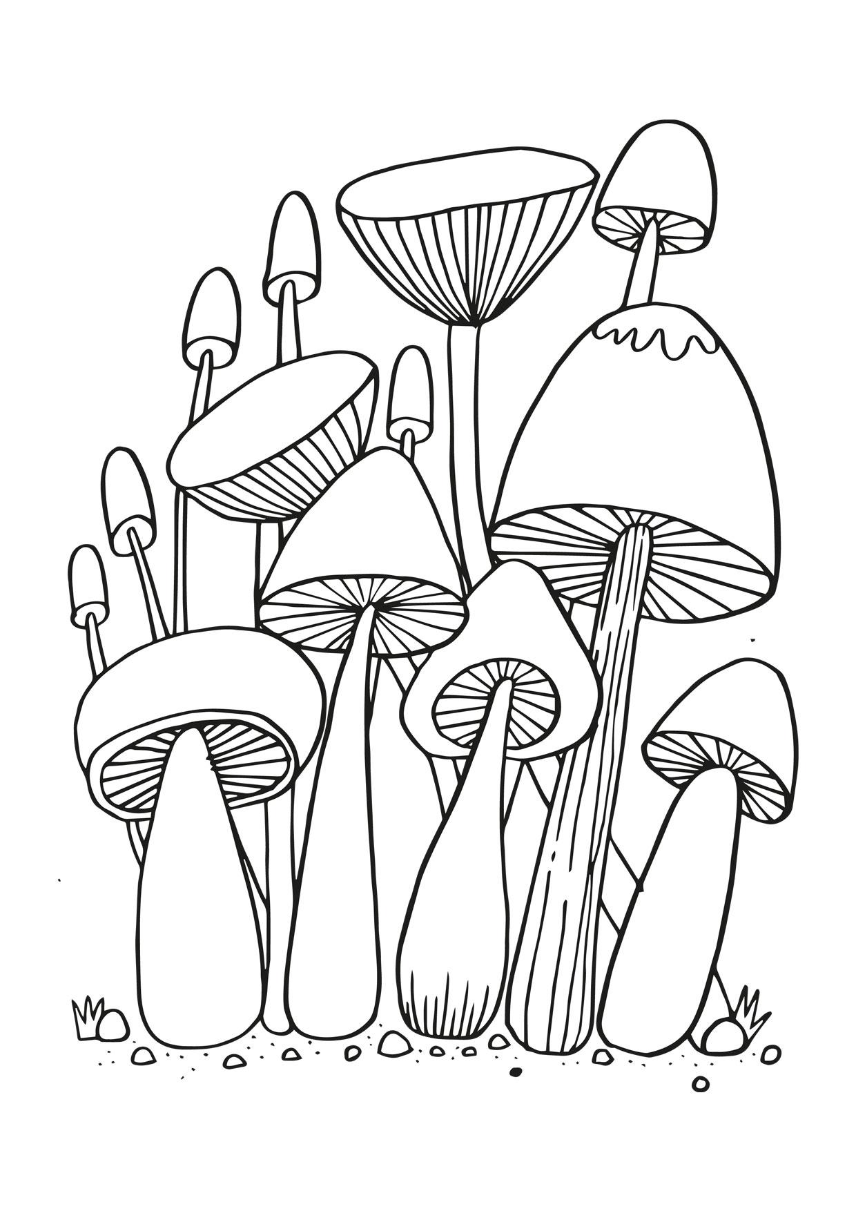 Disegno di funghi da colorare 15