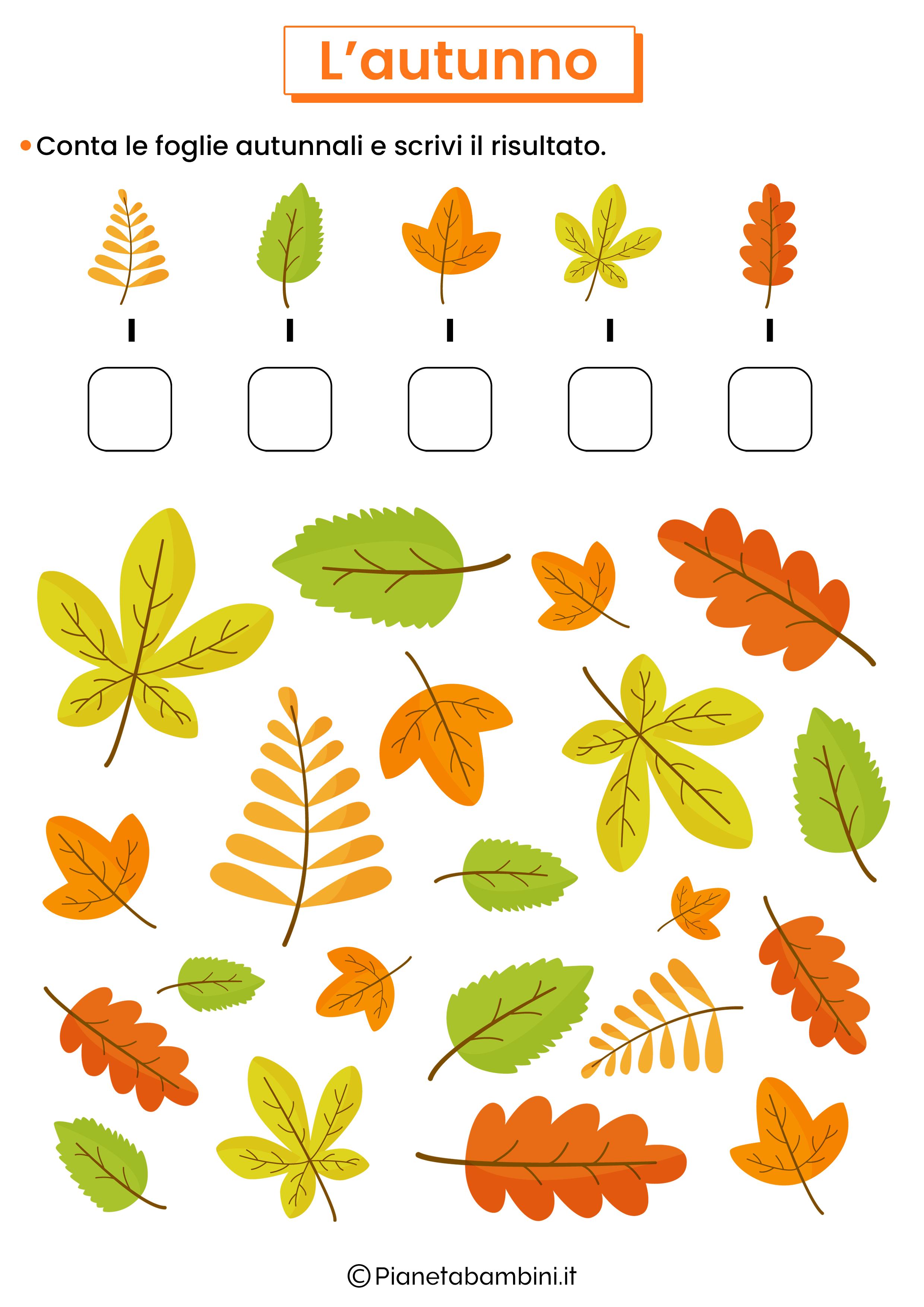 Schede didattiche sull'autunno per la scuola primaria 12