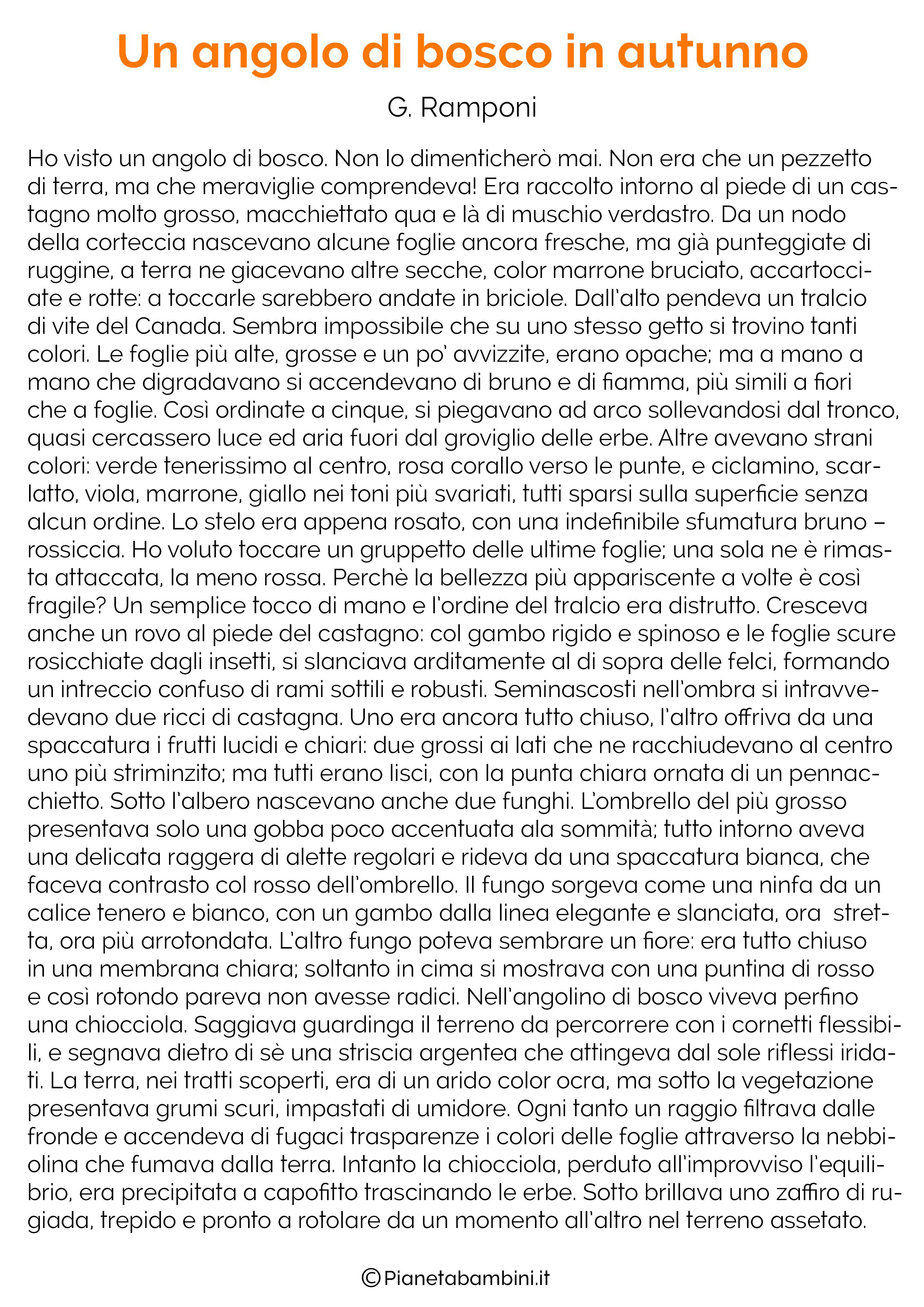 Racconto sull'autunno n.12