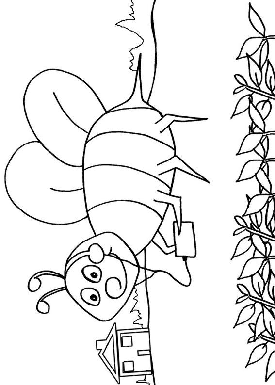 Disegno di ape 08