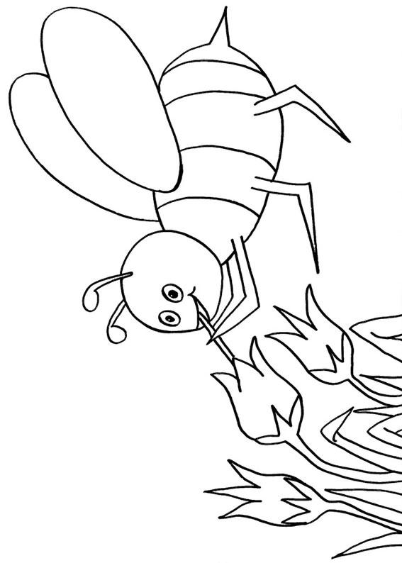 Disegno di ape 09