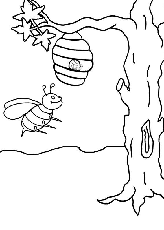 Disegno di ape 11