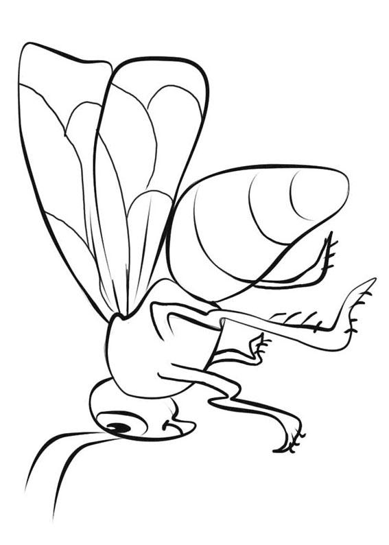 Disegno di ape 16