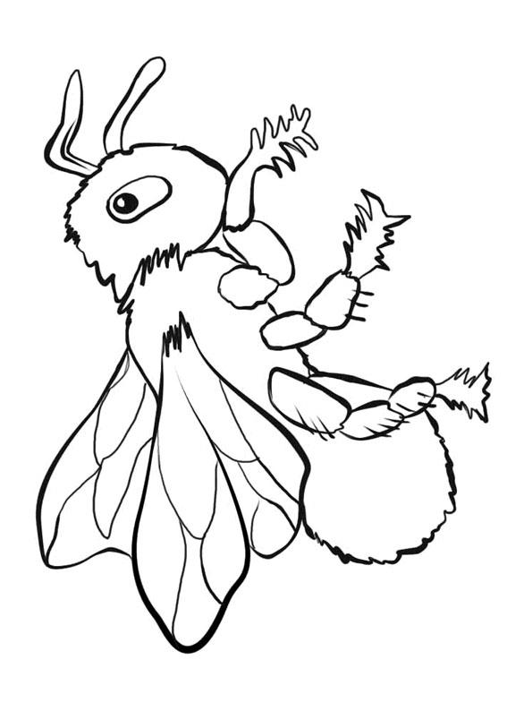 Disegno di ape 17