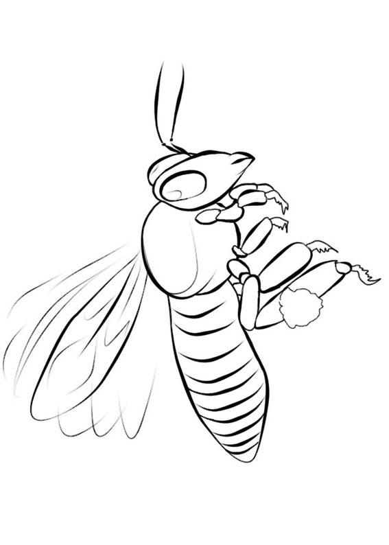 Disegno di ape 20
