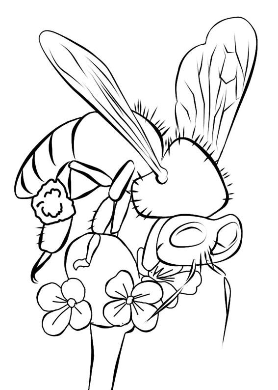 Disegno di ape 24