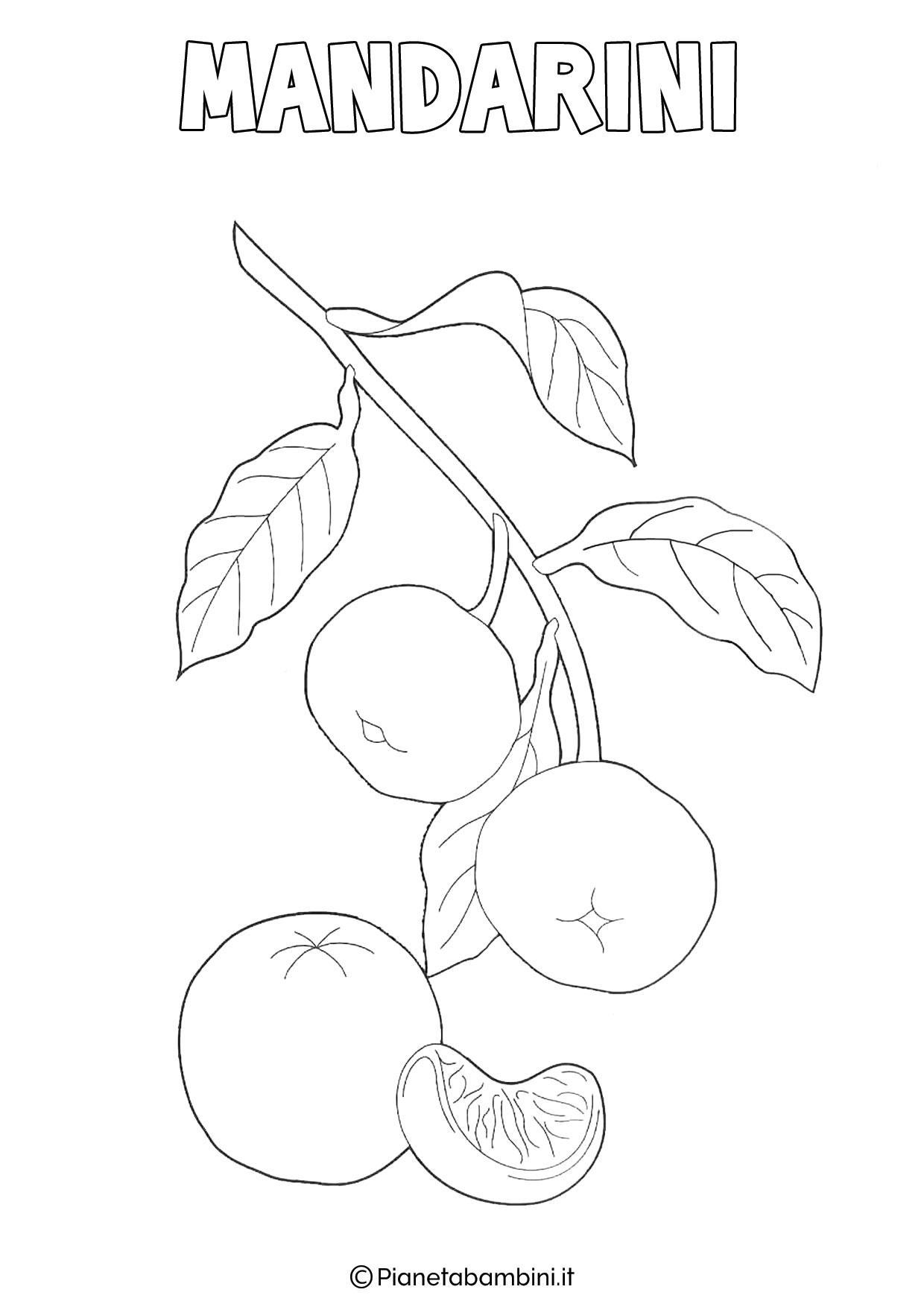 Disegno di mandarini da colorare