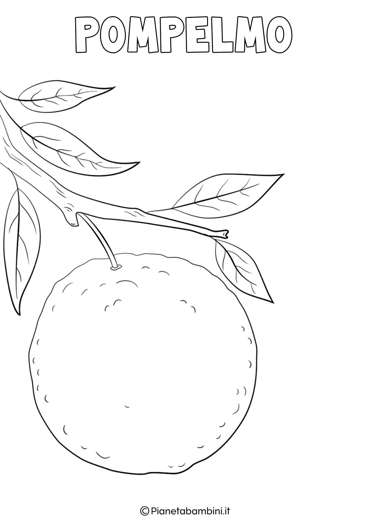 Disegni Di Frutta Invernale Da Colorare Pianetabambini It