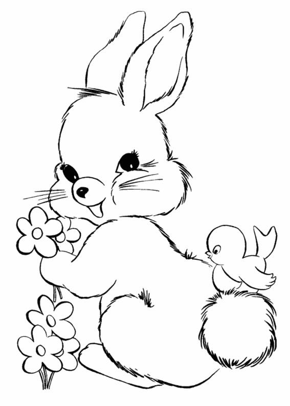 45 Disegni Di Conigli Da Colorare Pianetabambini It