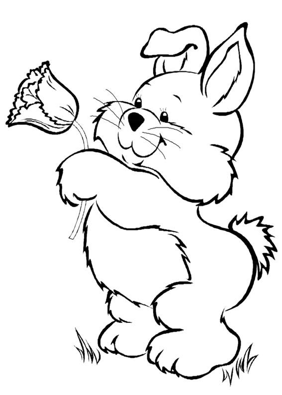 Disegni di conigli cartoon da colorare 13