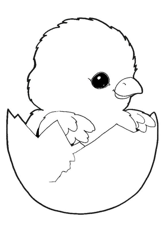 Disegni di pulcini Cartoon da colorare 02