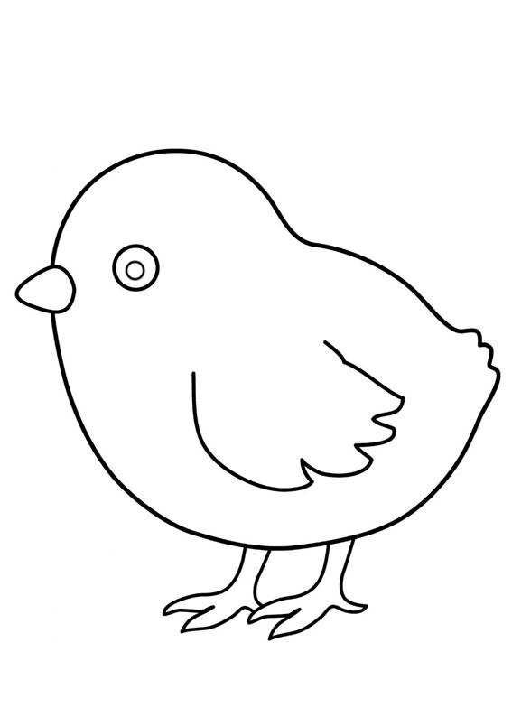 Disegni di pulcini Cartoon da colorare 04