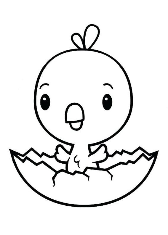 Disegni di pulcini Cartoon da colorare 07