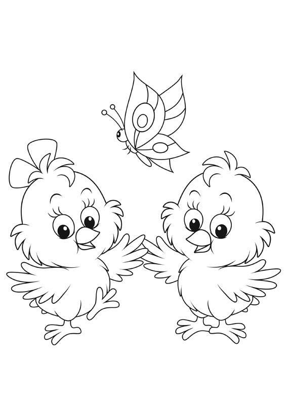 Disegni di pulcini Cartoon da colorare 12