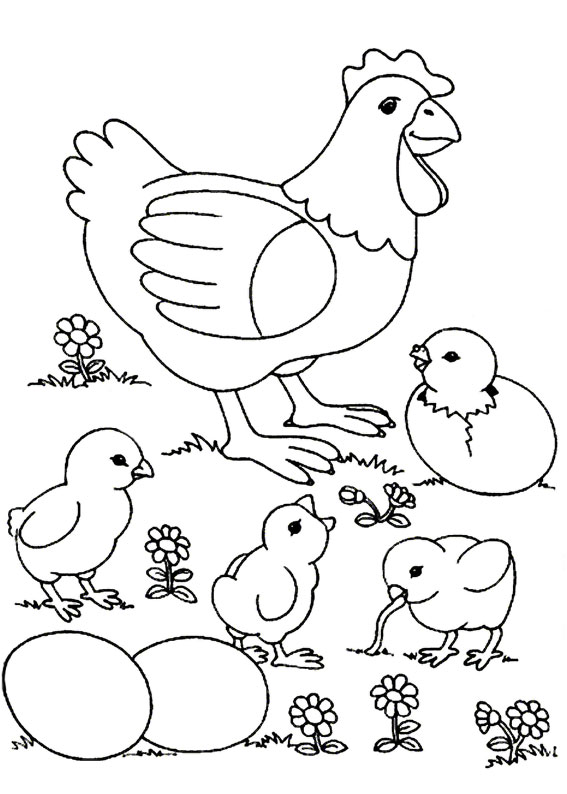 Disegni di pulcini Cartoon da colorare 15