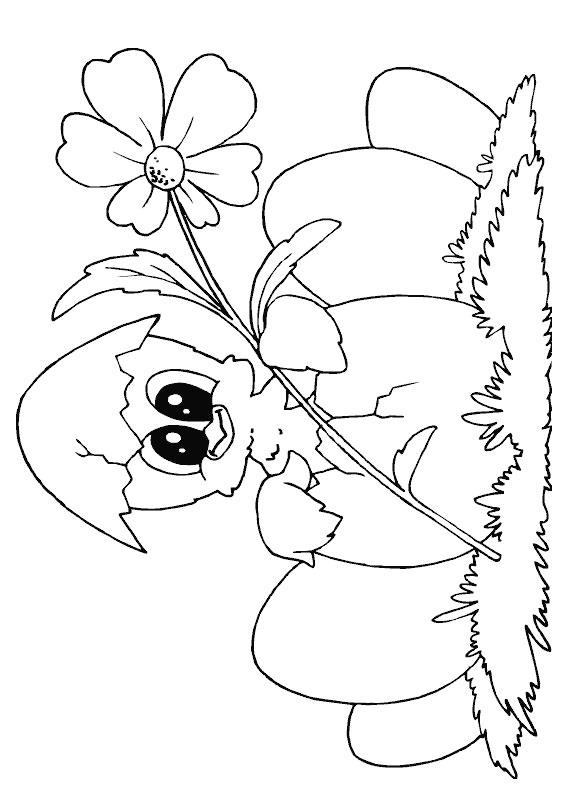 Disegni di Pulcini Pasquali da colorare 11