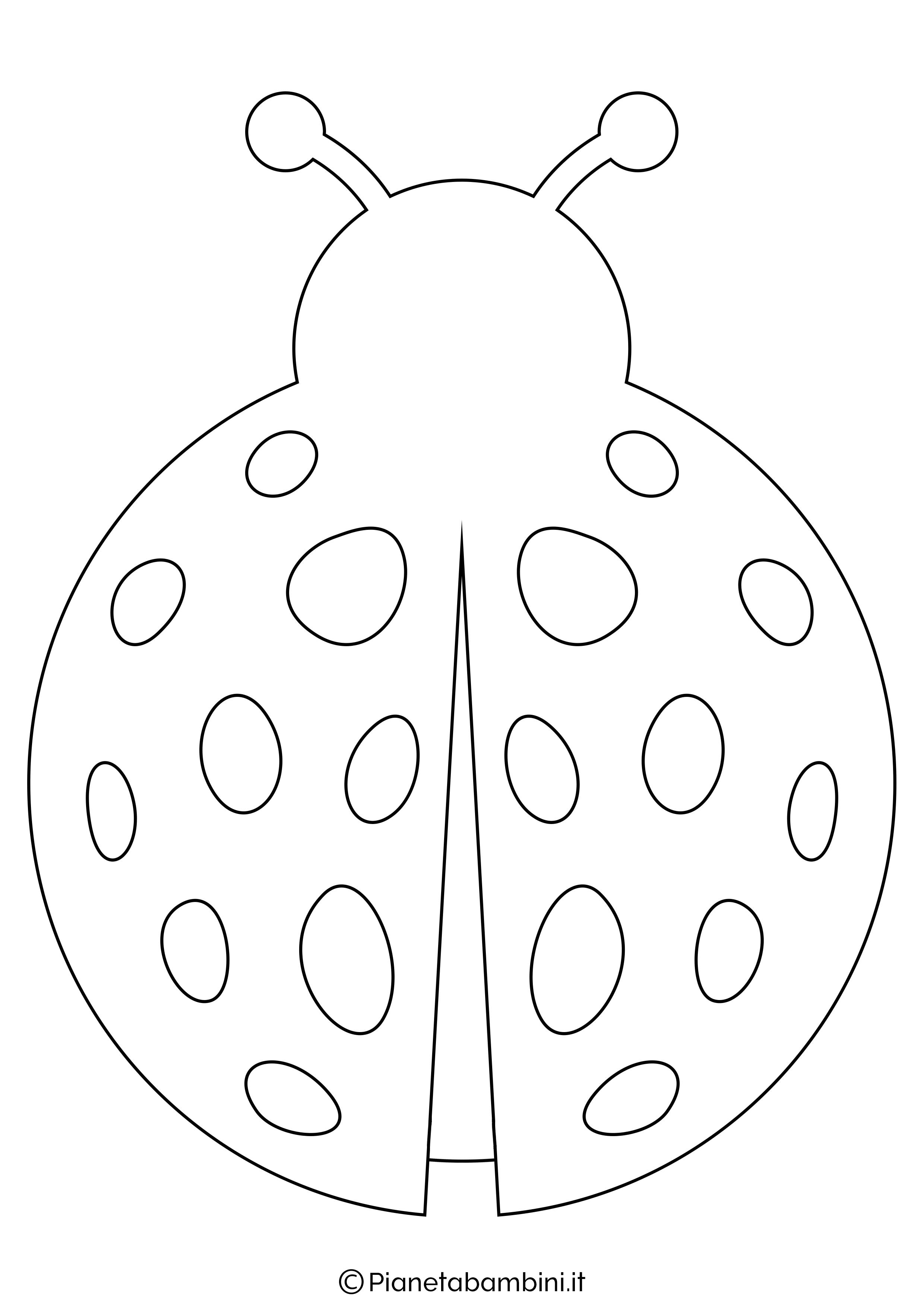 Disegno coccinella grande 1