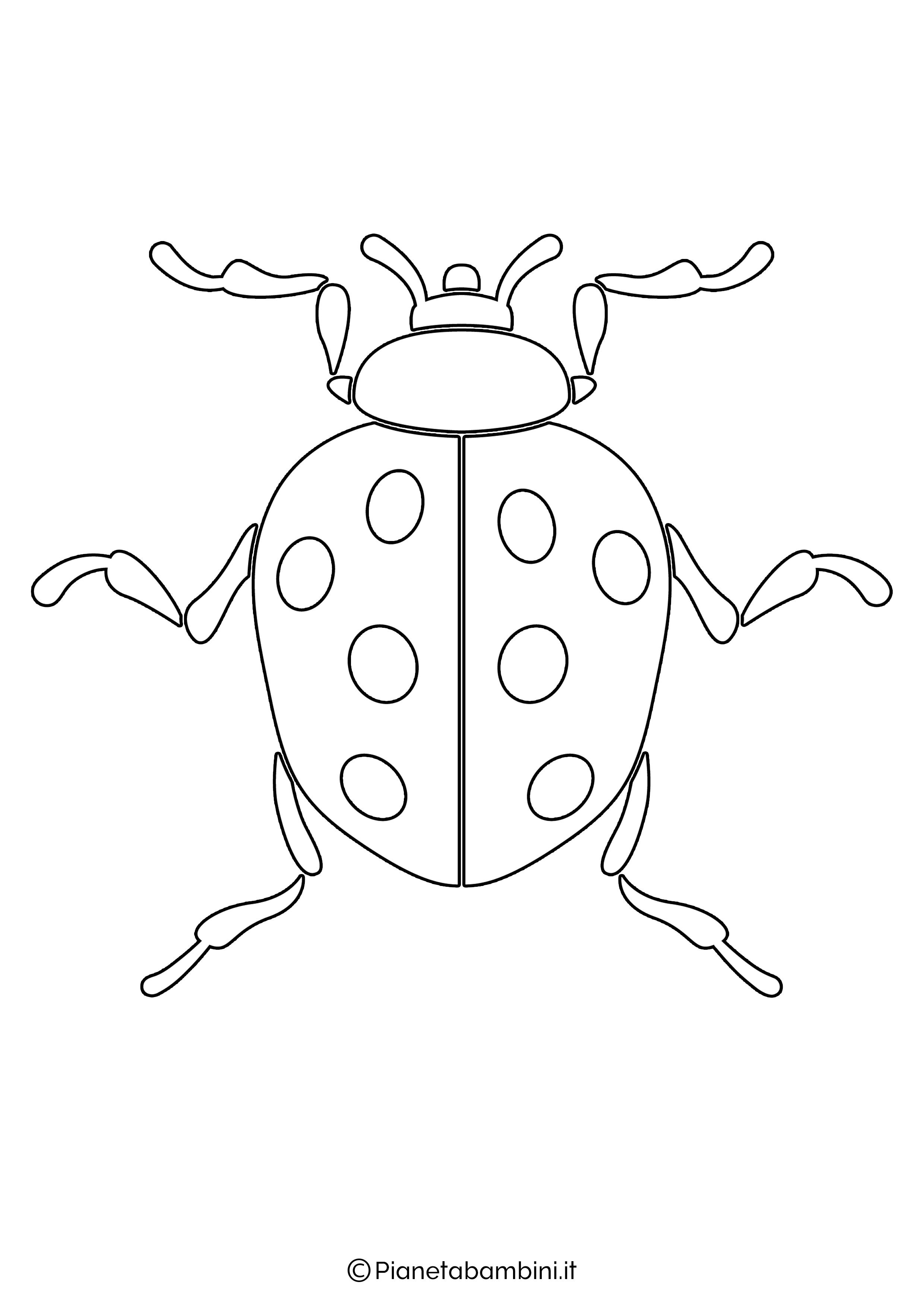 Disegno coccinella grande 8