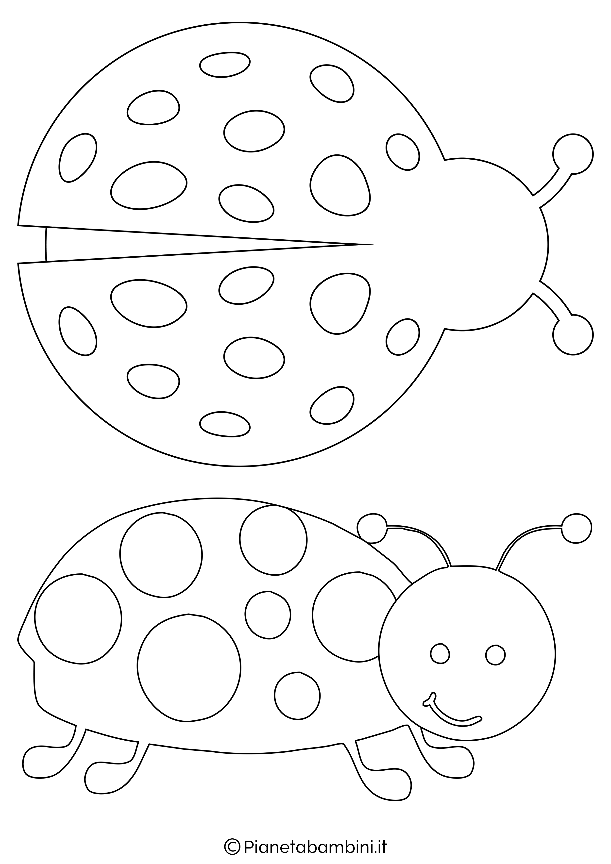 Disegni coccinelle medie 1