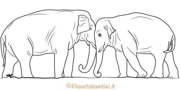 Disegni di elefanti reali ed in versione cartoon da colorare
