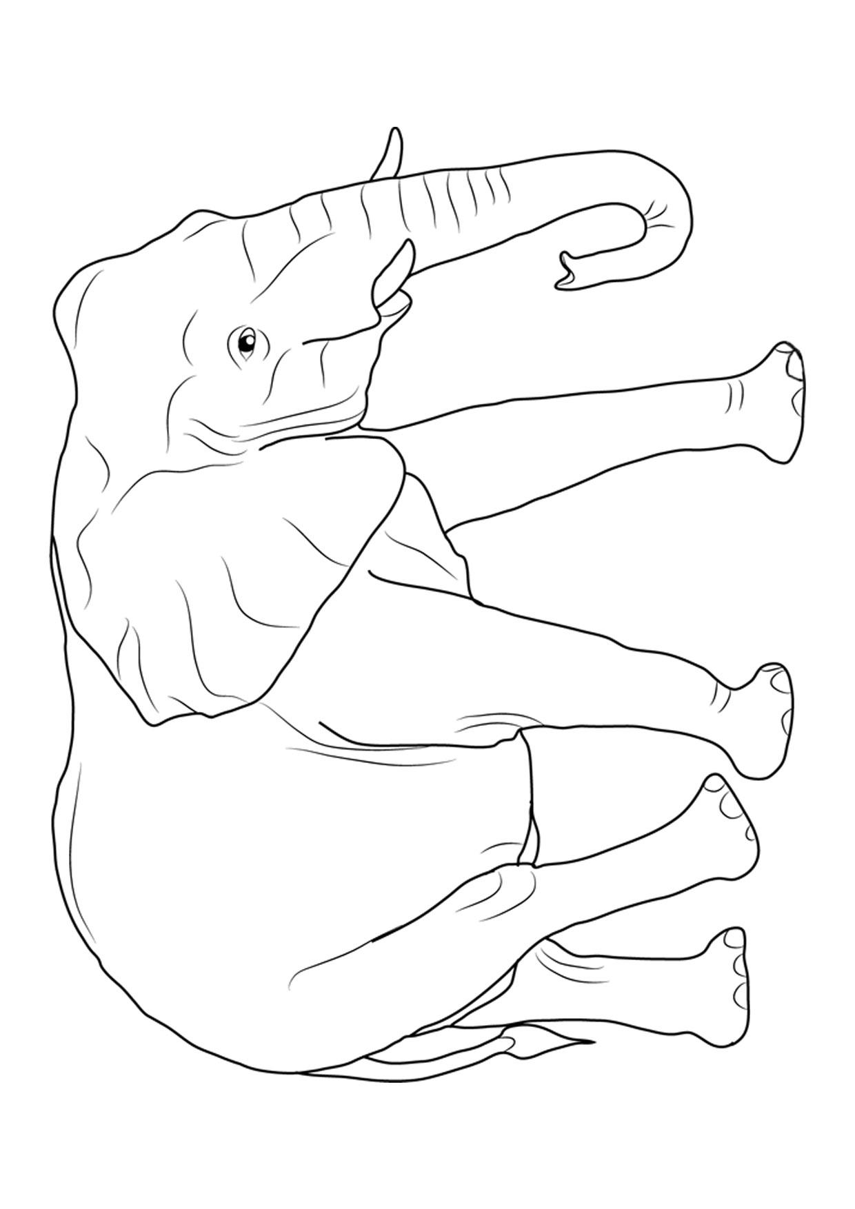 Disegno di elefanti da colorare 01