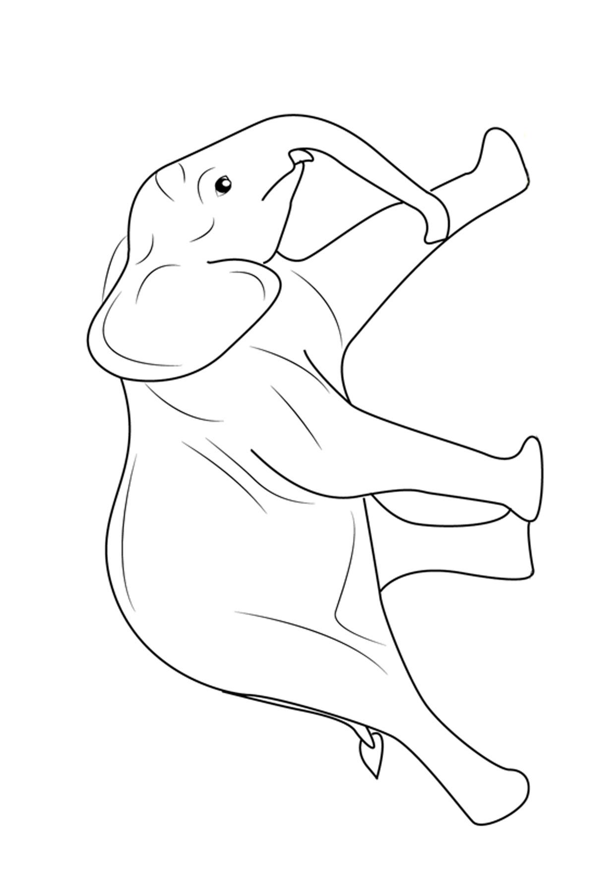 Disegno di elefanti da colorare 03