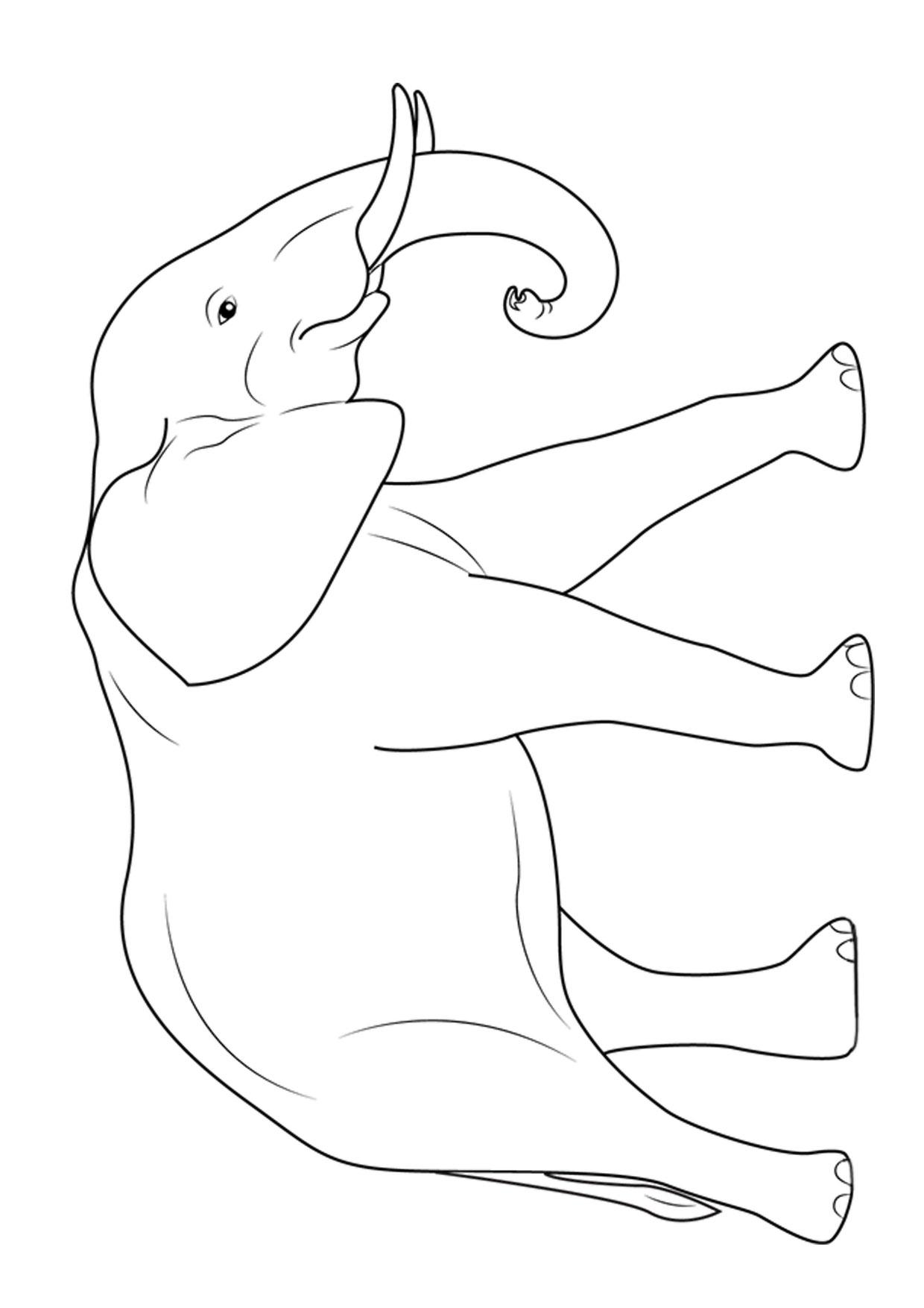 Disegno di elefanti da colorare 06