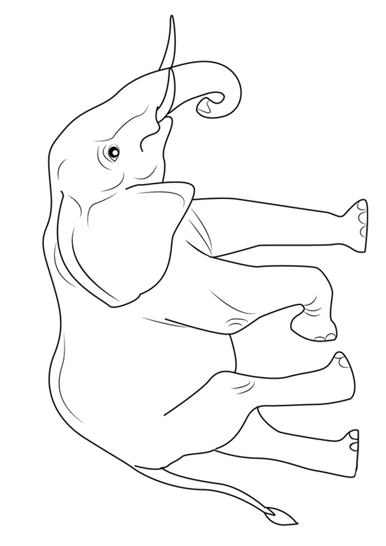 Disegno di elefanti da colorare 08