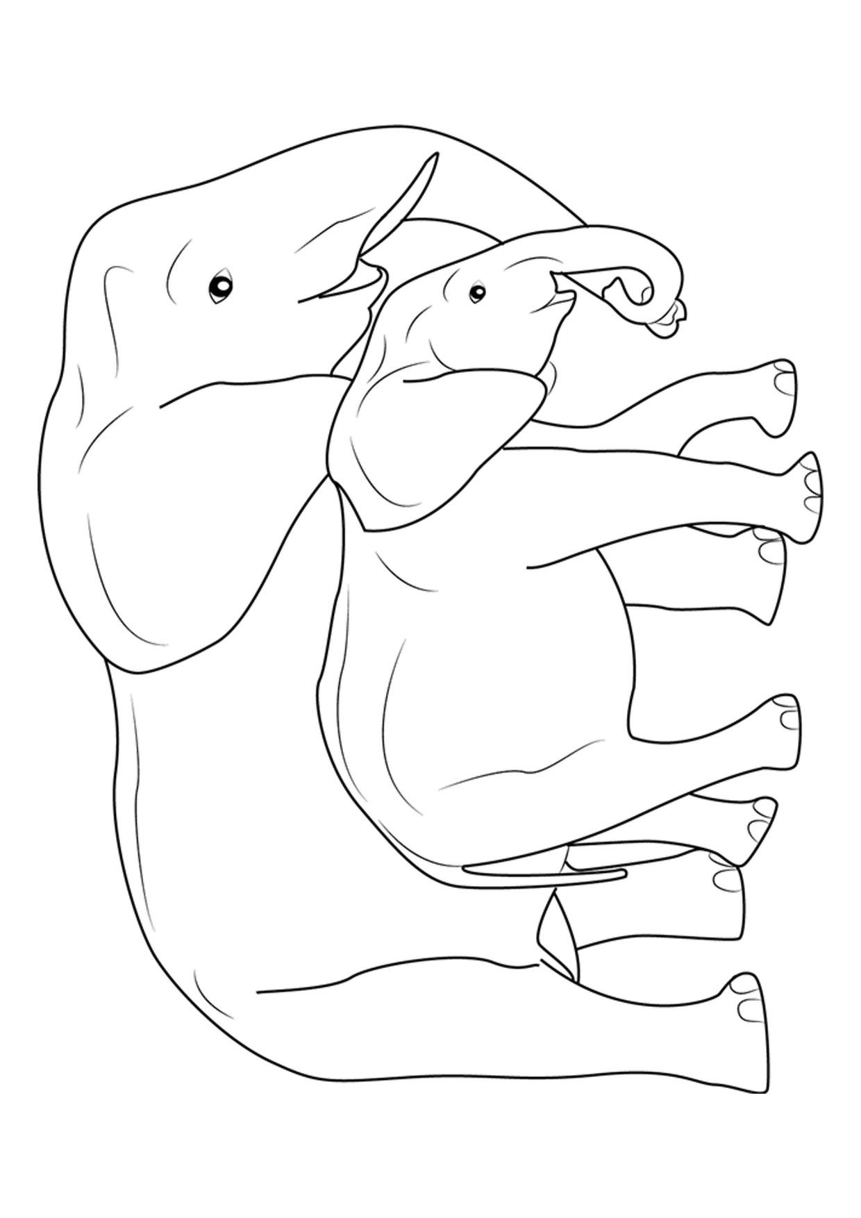 Disegno di elefanti da colorare 09