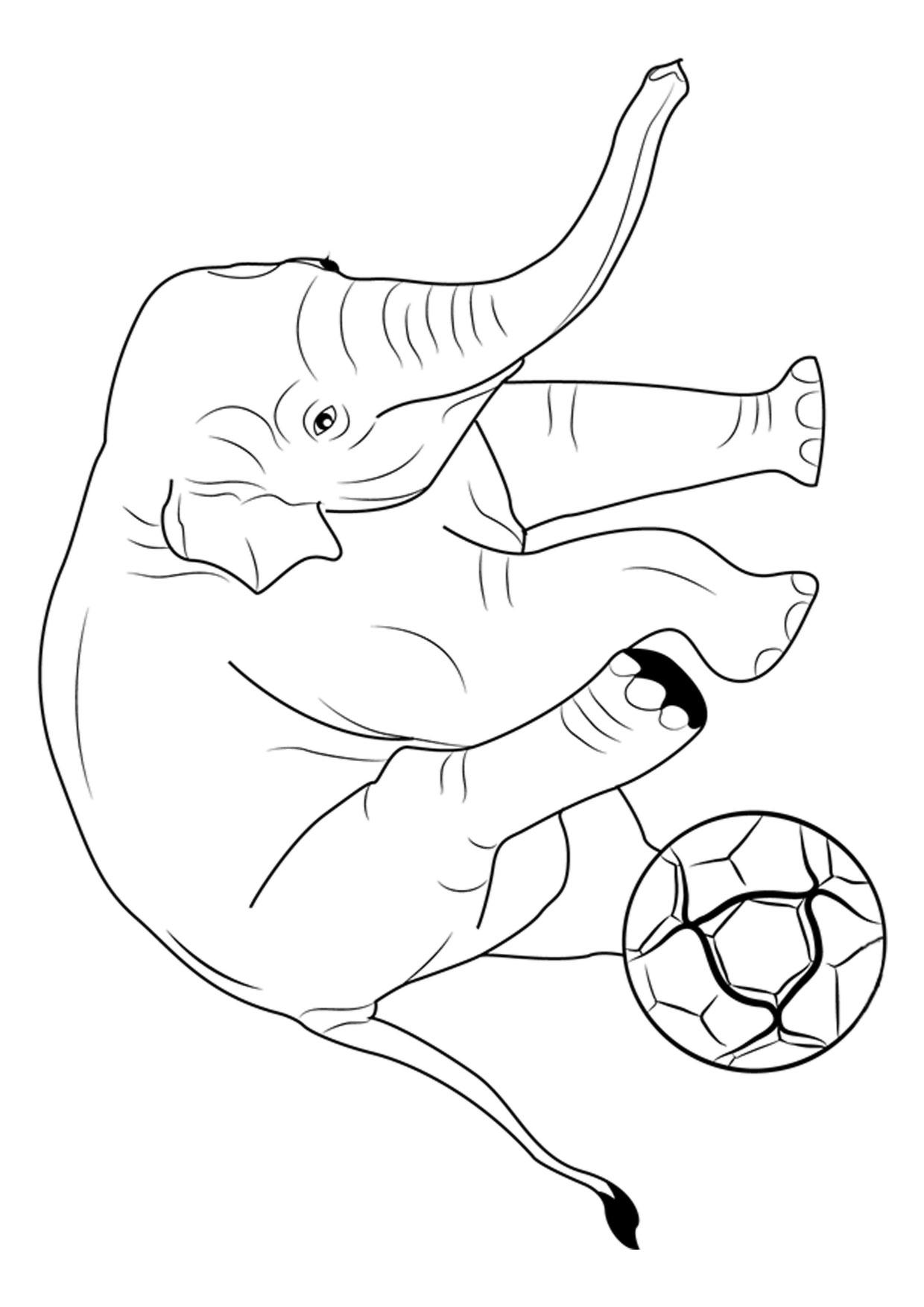 Disegno di elefanti da colorare 14