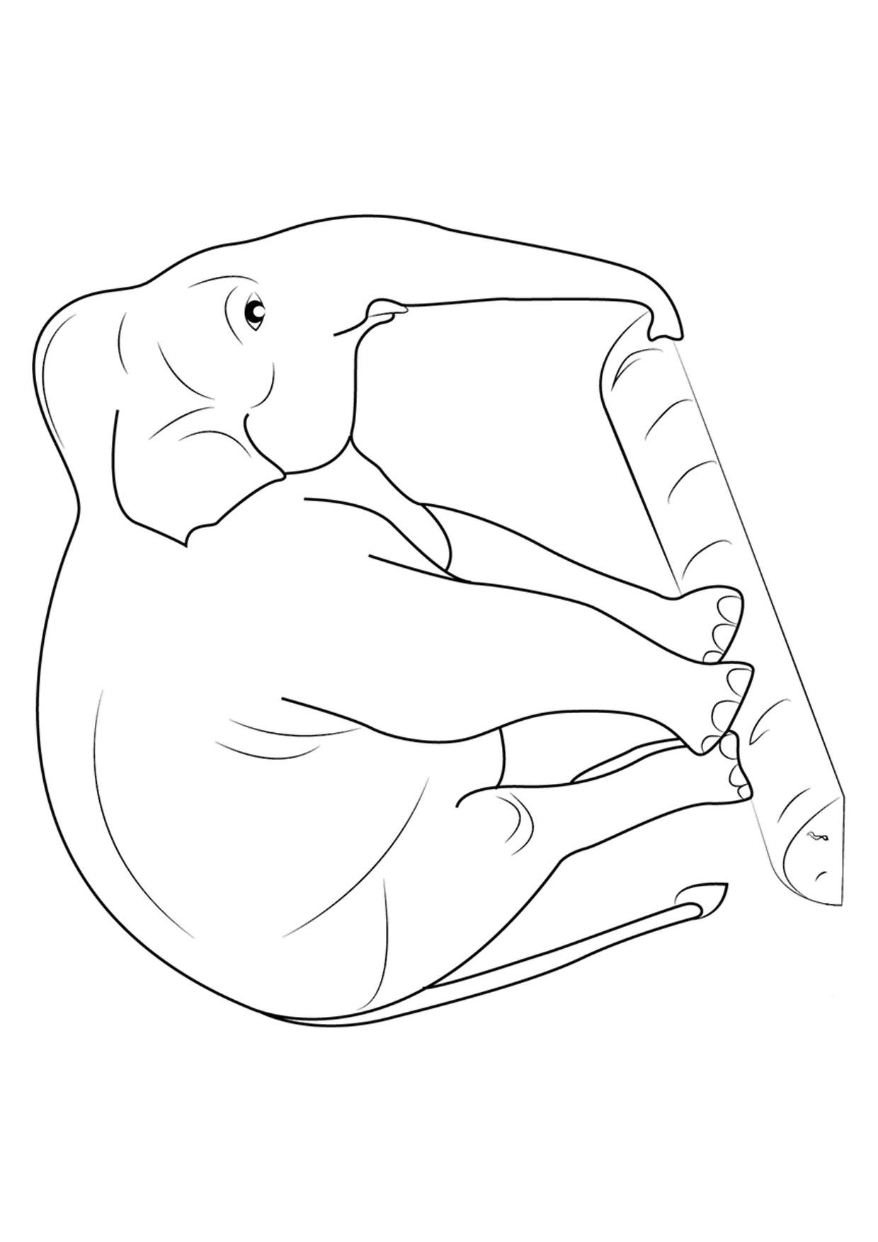 Disegno di elefanti da colorare 17