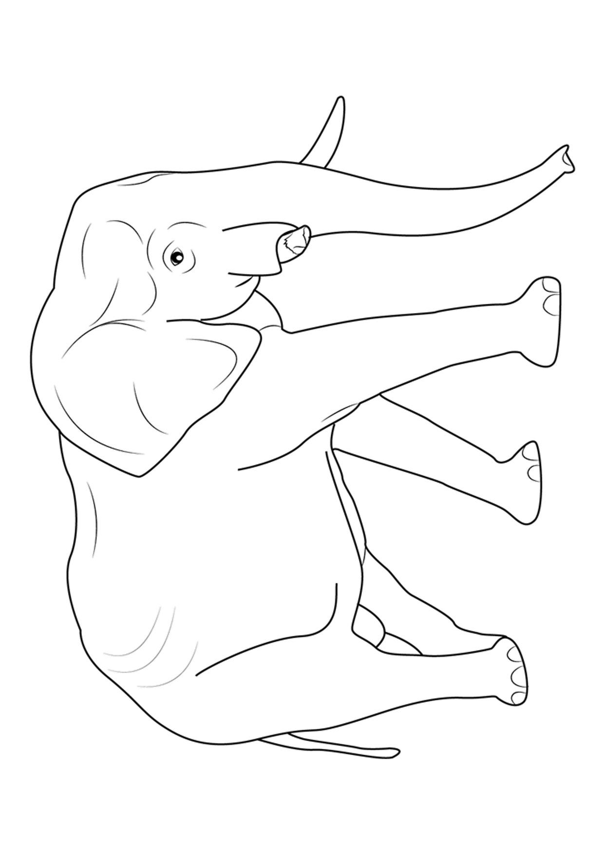 Disegno di elefanti da colorare 19