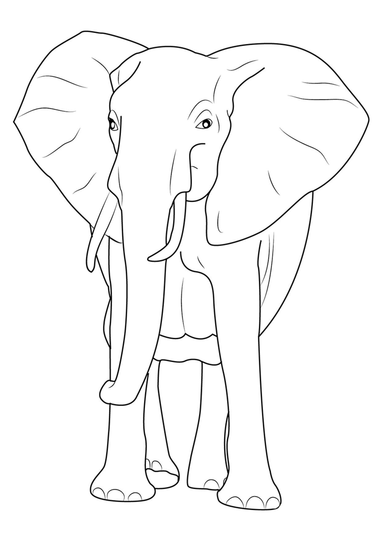 Disegno di elefanti da colorare 21