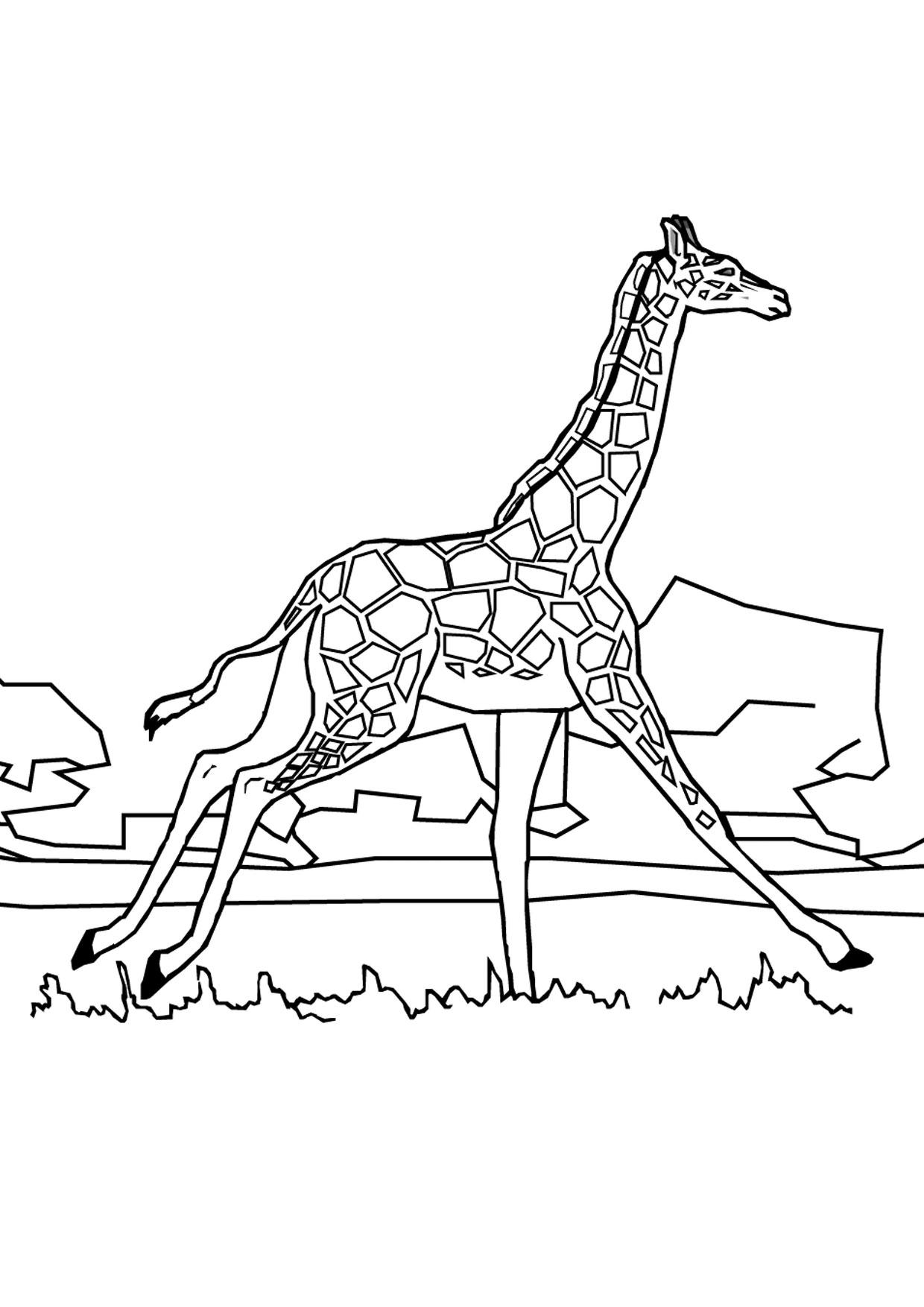 Disegno di giraffa 05