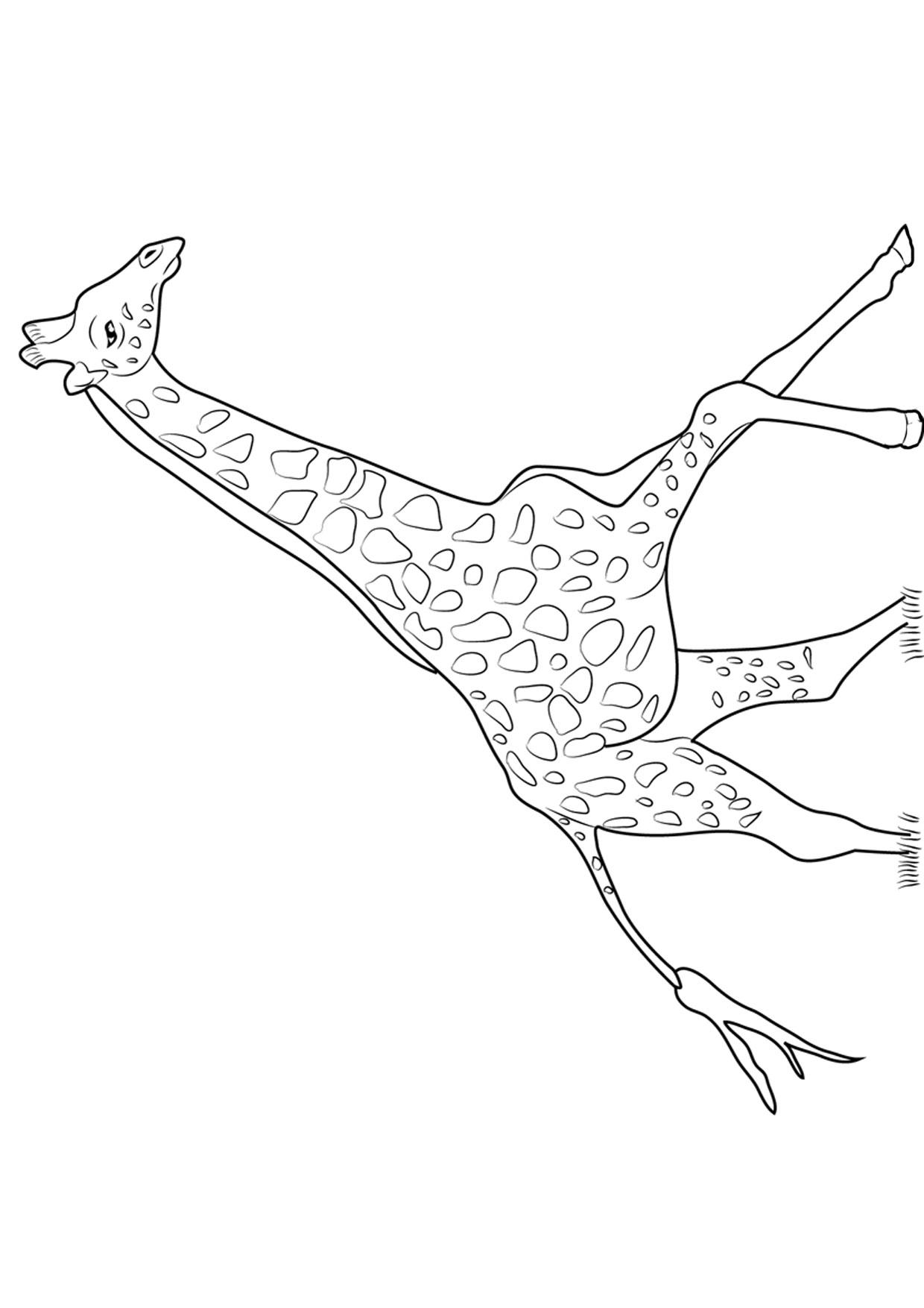 Disegno di giraffa 07