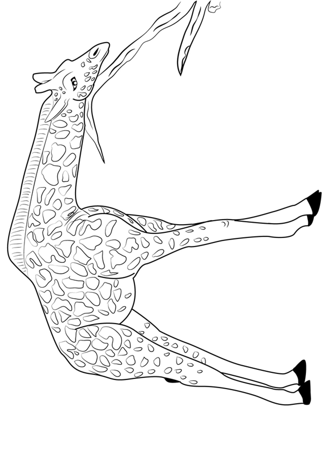 Disegno di giraffa 08
