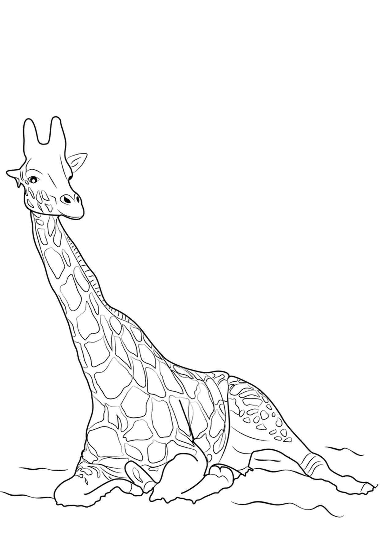 30 disegni di giraffe da colorare for Disegni di lupi da stampare