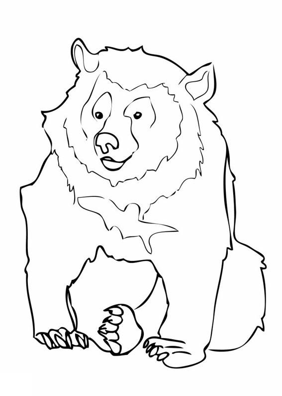 Disegno di Orso da colorare 02