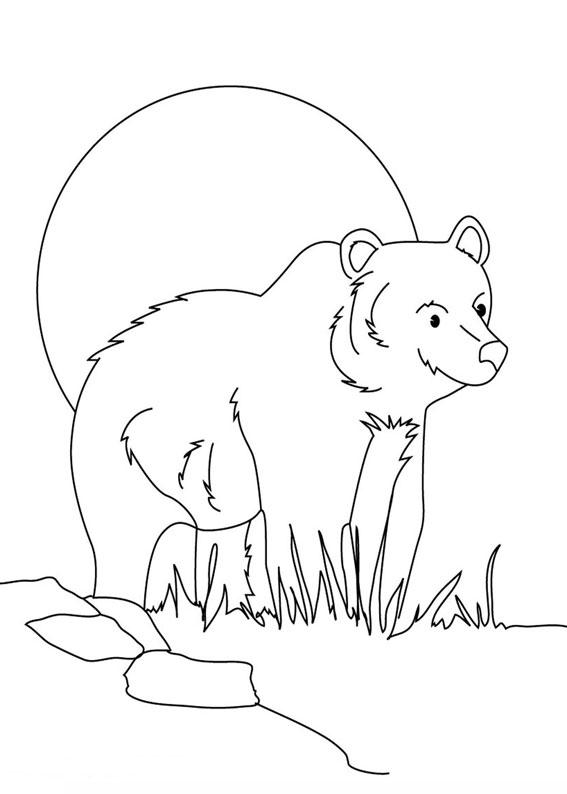 Disegno di Orso da colorare 03