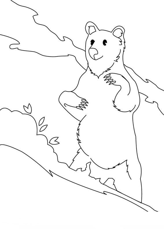 Disegno di Orso da colorare 04