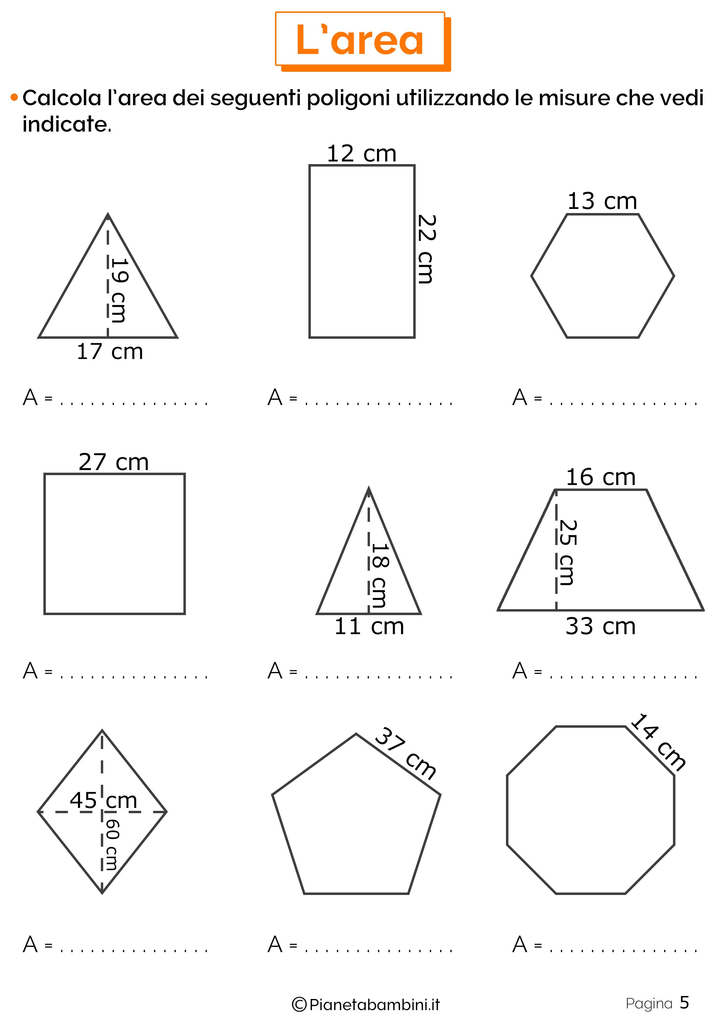Schede didattiche area 5