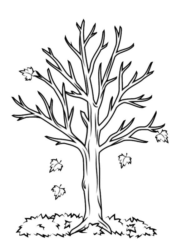 Disegno di albero autunnale da colorare 02