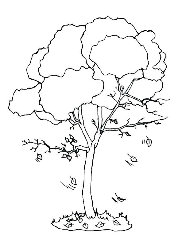 Disegno di albero autunnale da colorare 03