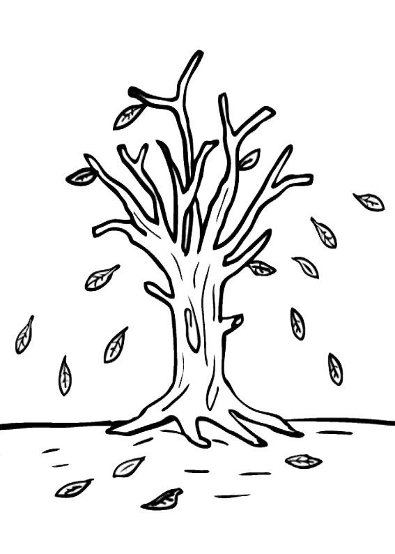 Disegno di albero autunnale da colorare 05