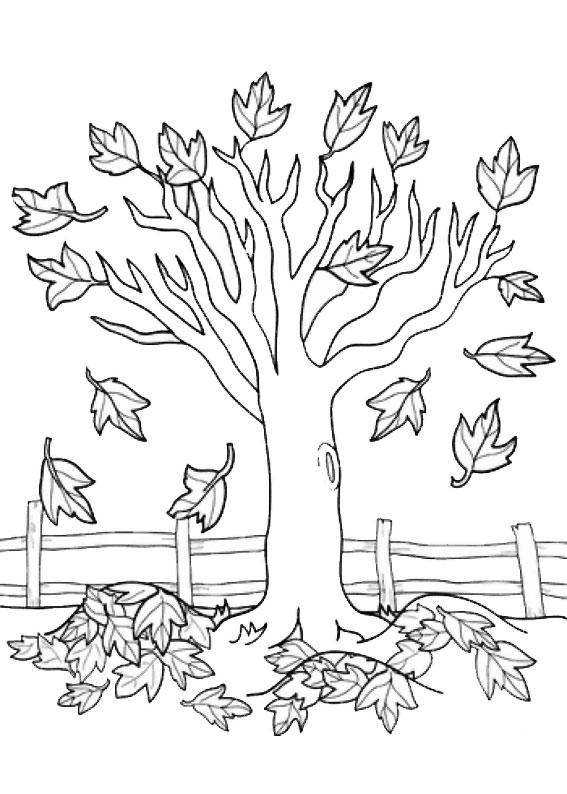 Disegno di albero autunnale da colorare 06