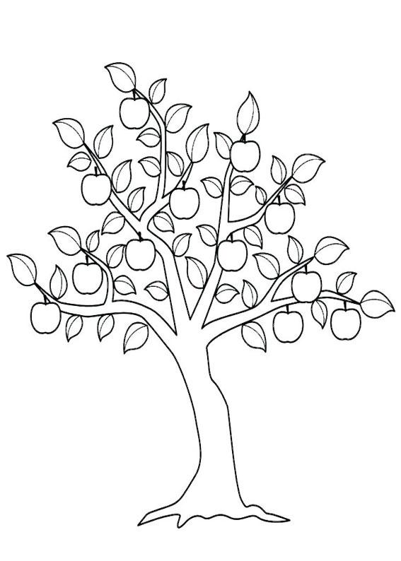 Disegno di albero autunnale da colorare 08
