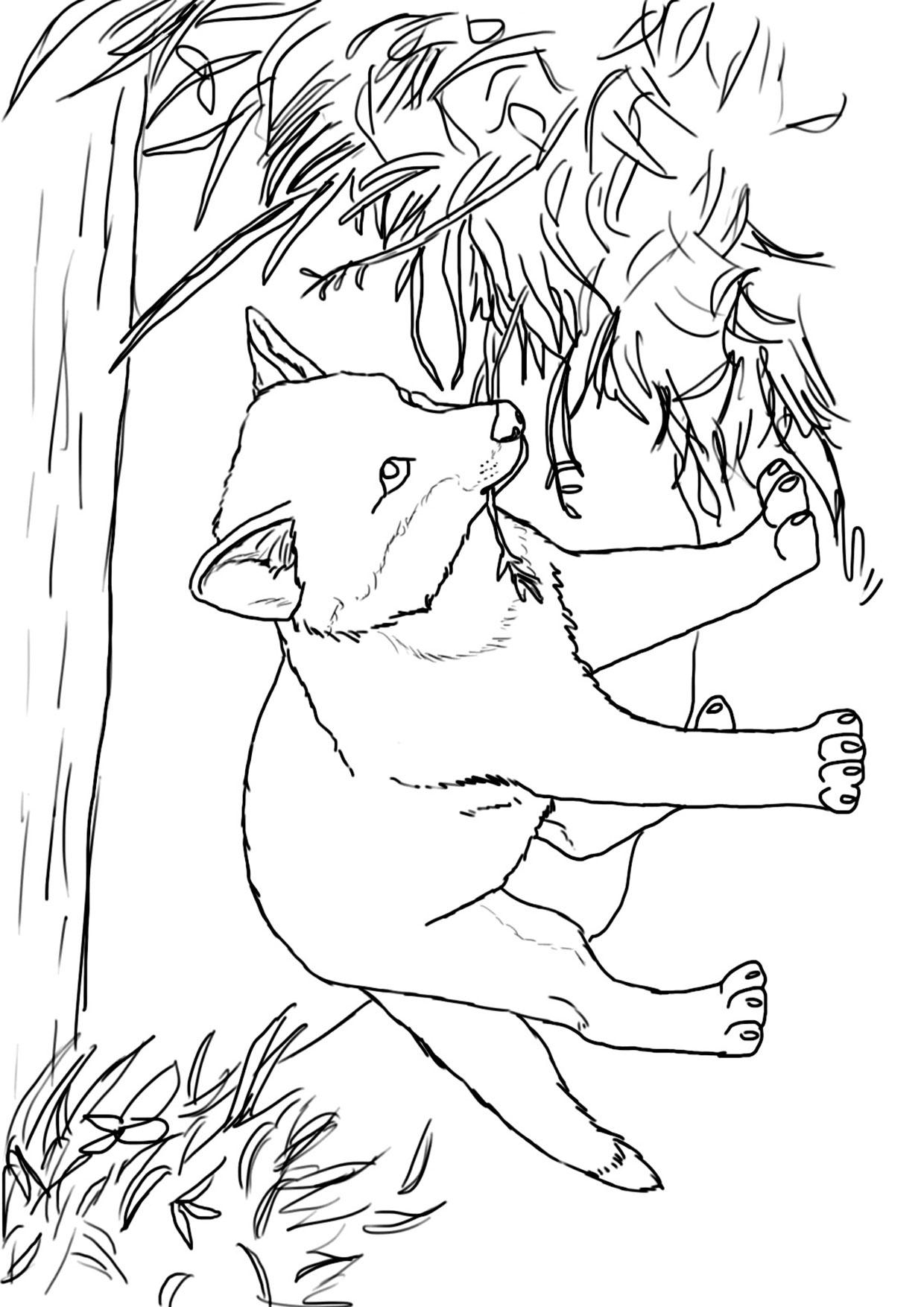 Disegno di volpe da colorare 05