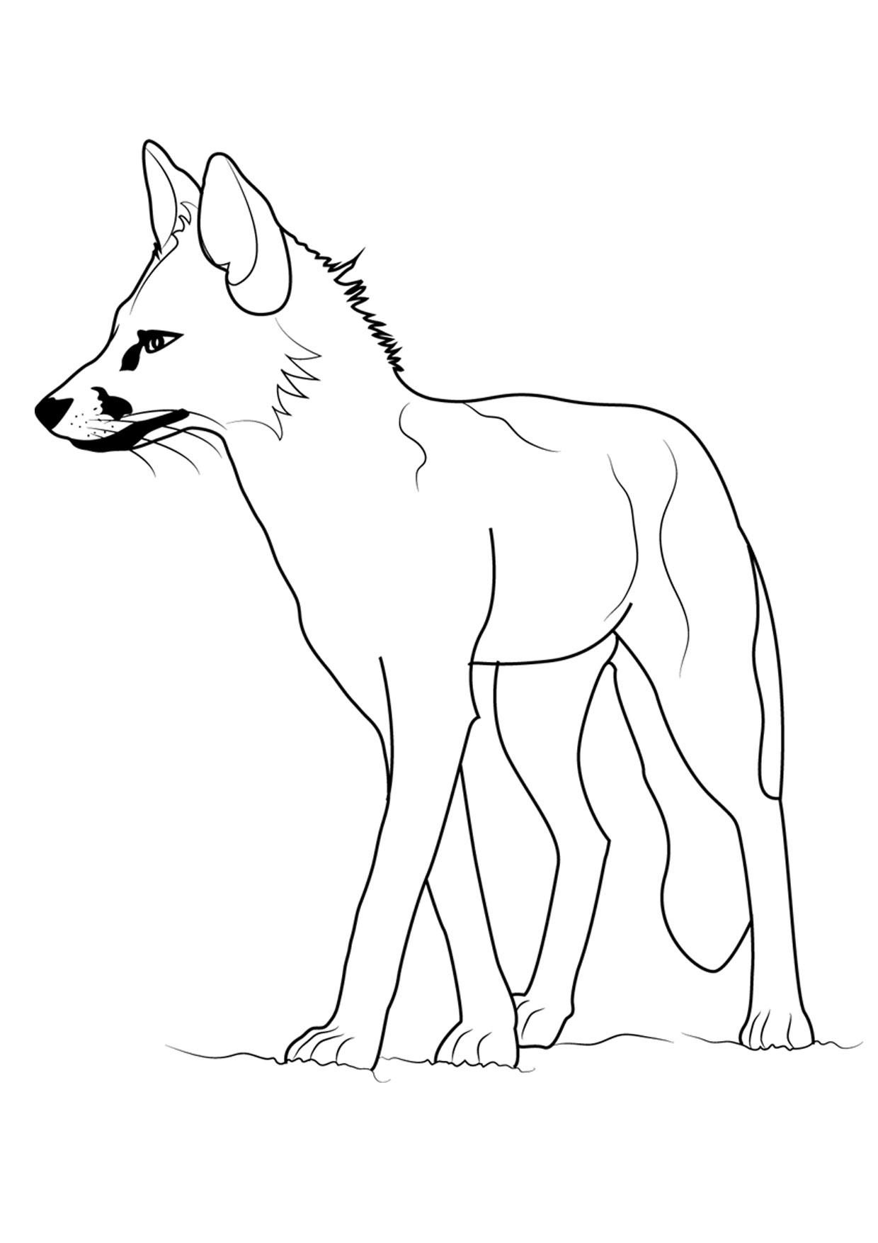 Disegno di volpe da colorare 07