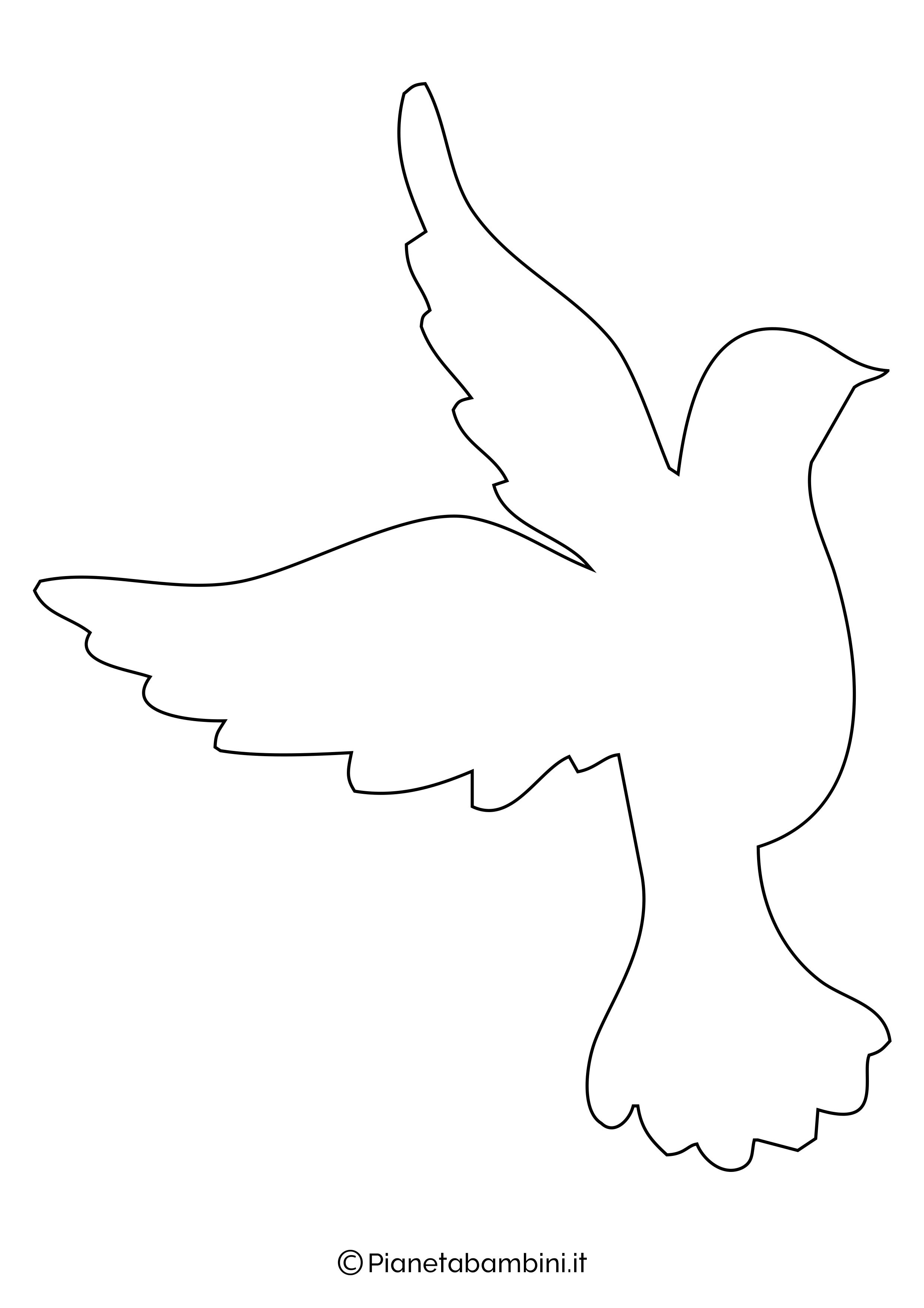 Disegni di colombe grandi 4